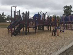 Strong Start families visit our playgrouns.